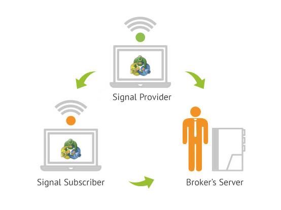 Binary option live signal service